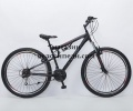 Bicycle 29 inch Transformer