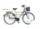 Bicycle FLORIDA L / M 28