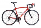Road cycling VIVELO VOLT