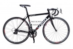 Road cycling VIVELO WATT